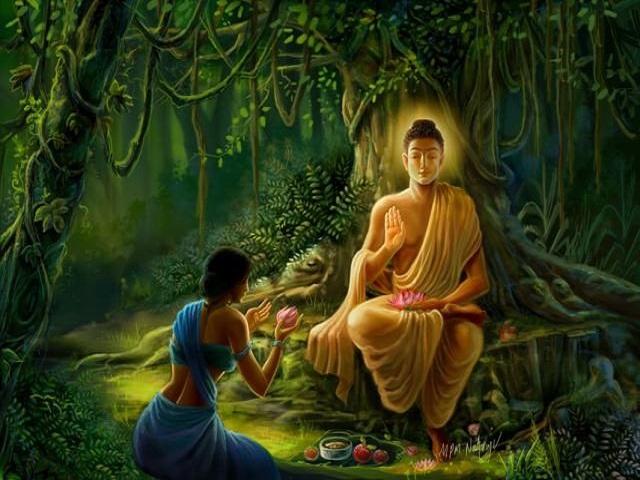 buddha aforismi