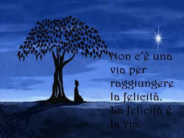 buddhismo frasi