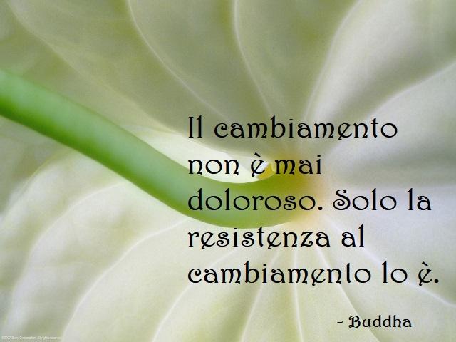 frasi buddha amore