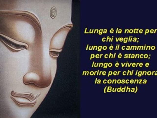 frasi buddha sulla vita