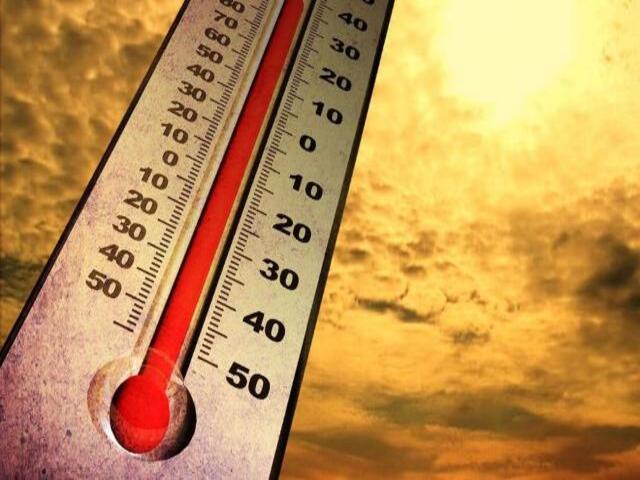 frasi contro il caldo