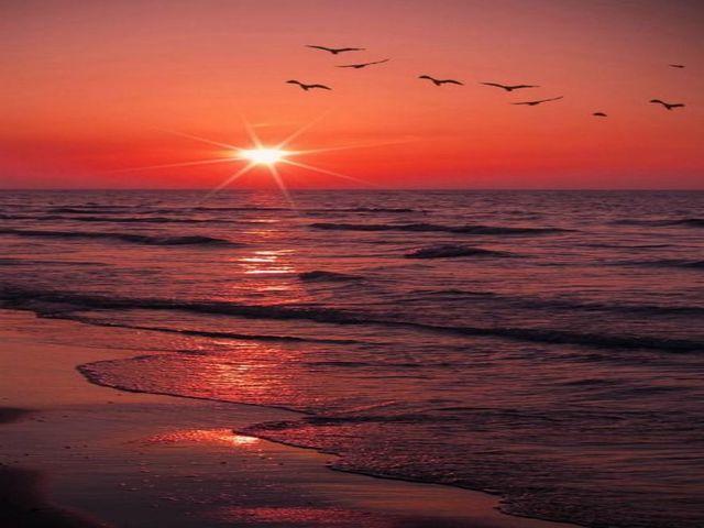 frasi tramonto amore