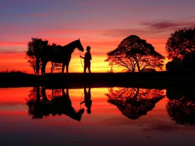 frasi tramonto fabio volo