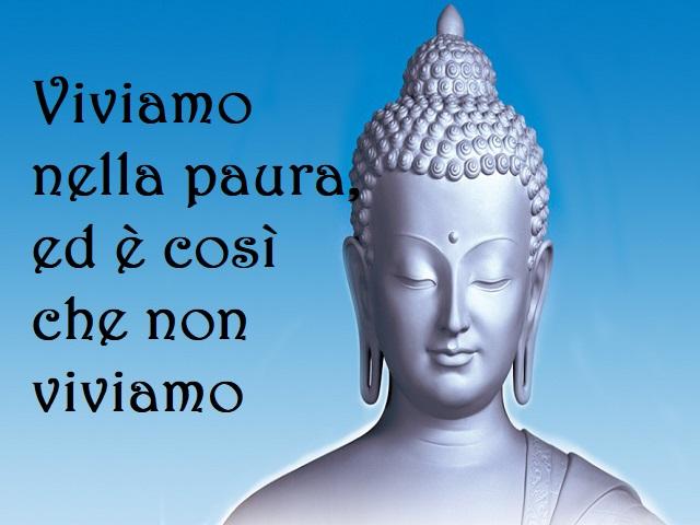 immagini buddha con frasi