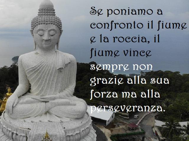 immagini buddha