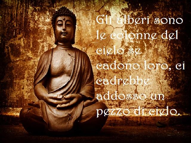immagini di buddha