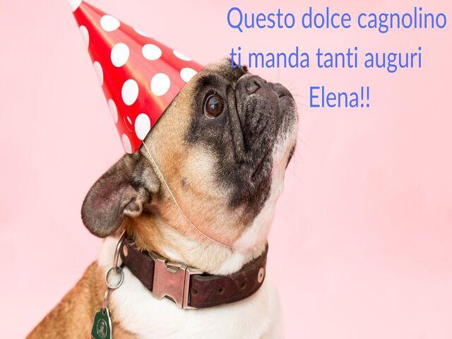 torta immagini Elena