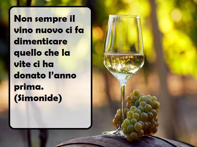 vino rosso frasi