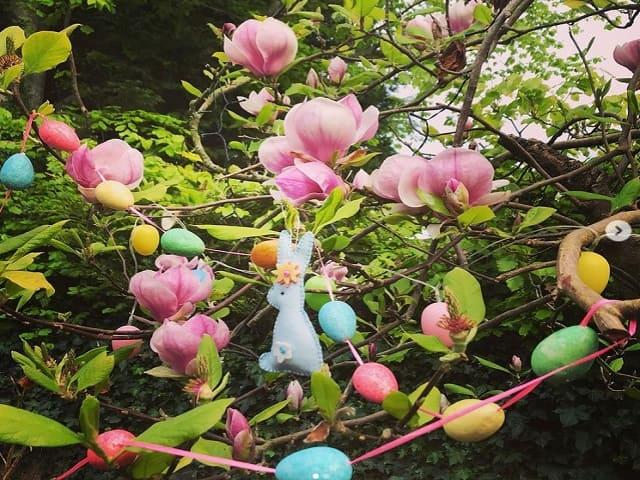 foto di pasqua giardino albero