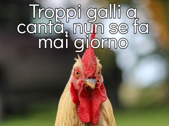 citazioni romanesche