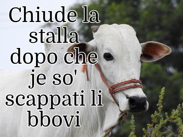 detti in dialetto romano