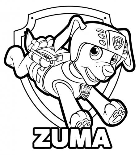 Paw Patrol - Zuma