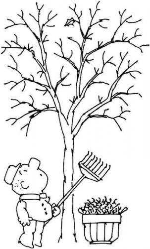 albero senza foglie da colorare