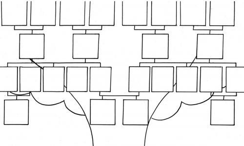 albero disegno