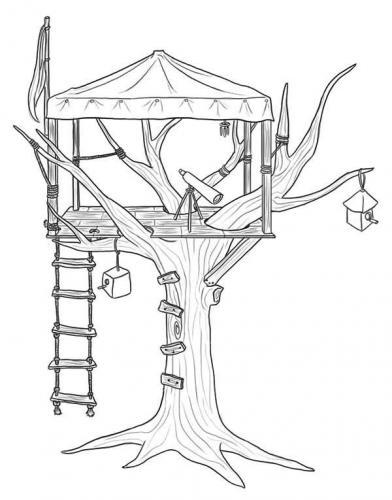 albero immagini