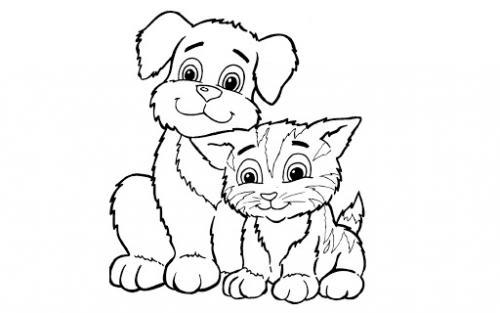 amici cane e gatto