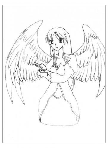 angeli manga