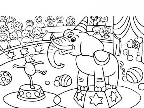 elefante al circo