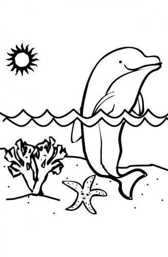 animali da colorare e stampare delfino