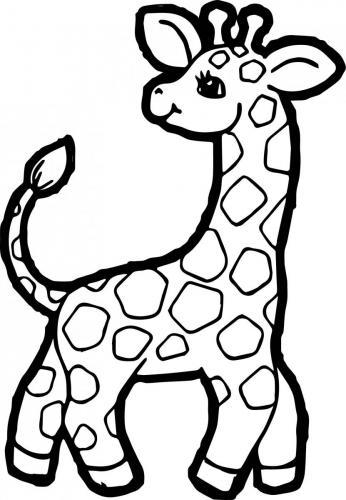 animali da colorare giraffa pdf gratis
