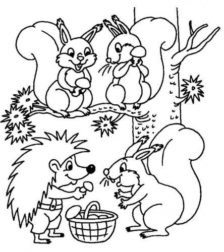 Animali bosco