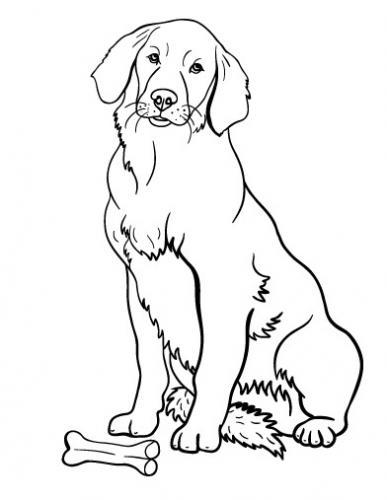 cane da colorare