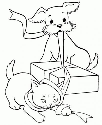cane e gatto giocano