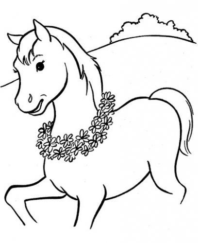 cavalli da disegnare