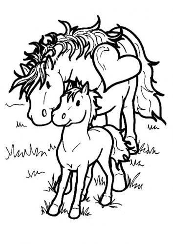 cavallo disegni