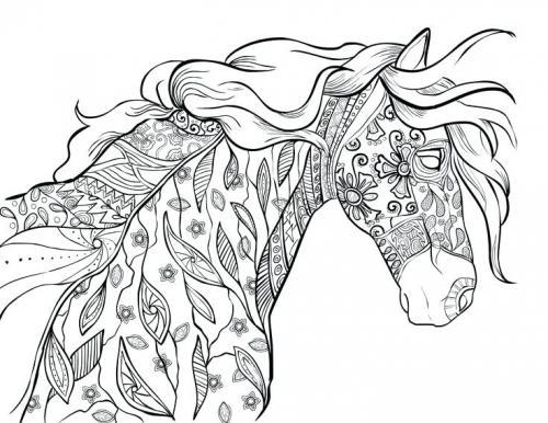 cavallo disegno per adulti