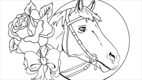 cavallo disegno