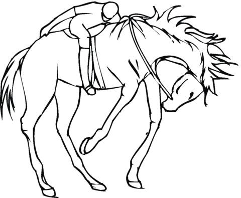 cavallo selvaggio da colorare e stampare