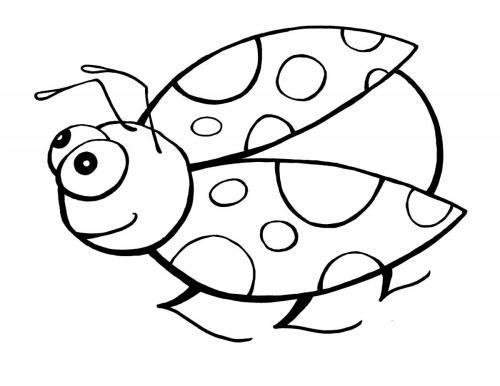 coccinella disegni per bambini