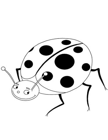 coccinelle disegni