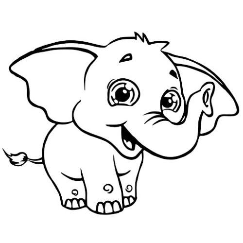 coda elefante