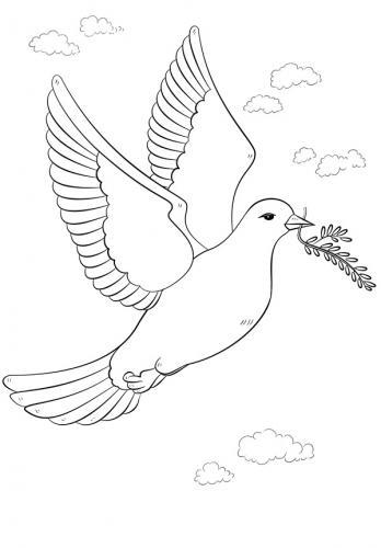 colomba che vola