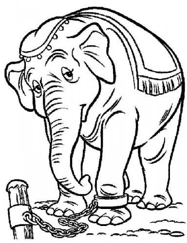 colorare on line personaggi Dumbo