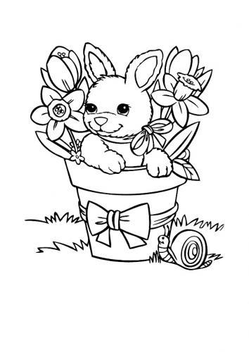 Coniglio disegno