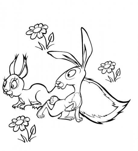 Il coniglio di Masha e Orso con la compagna