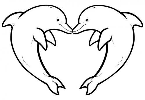 delfini da stampare e colorare