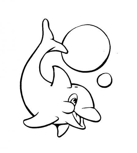 delfino disegno da colorare