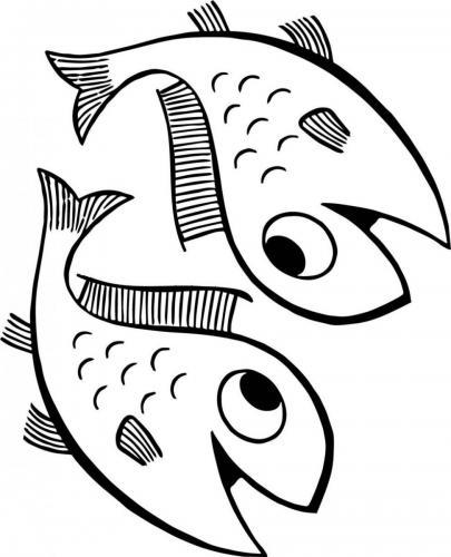 due pesci simpatici
