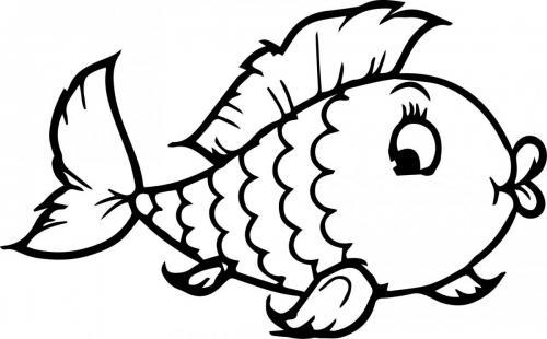 pesciolina simpatica