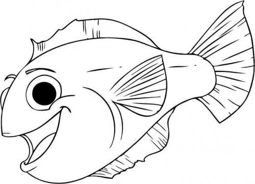 pesciolino che ride contento