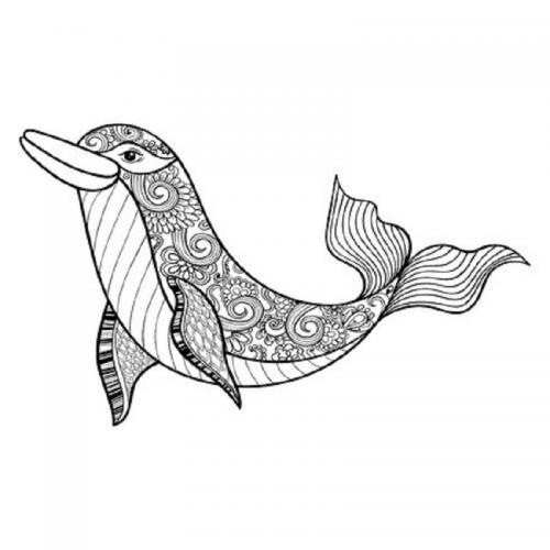 disegnare un delfino