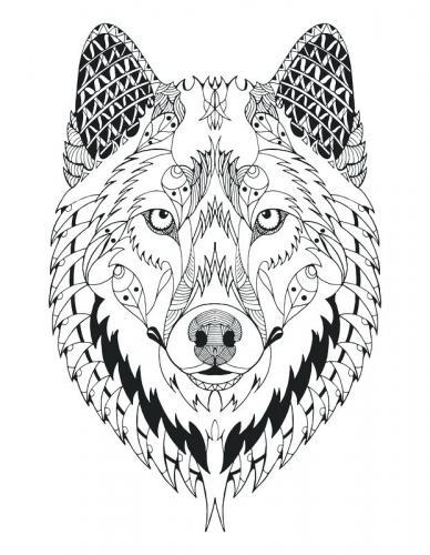 disegni a matita lupo