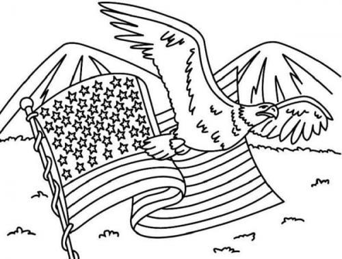 disegni aquile americane