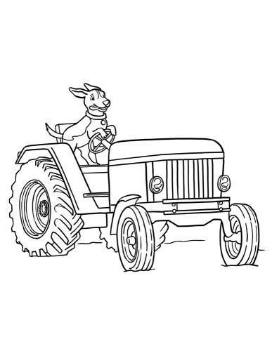cane su trattore