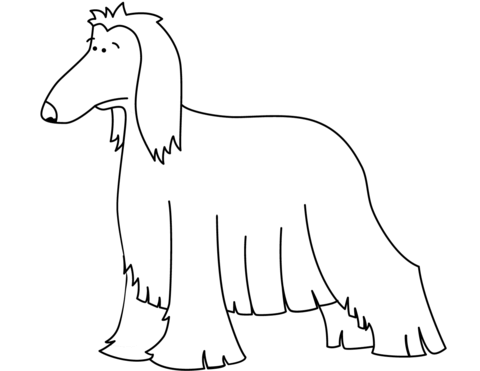 disegni cane