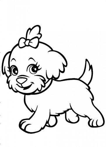 disegni cani
